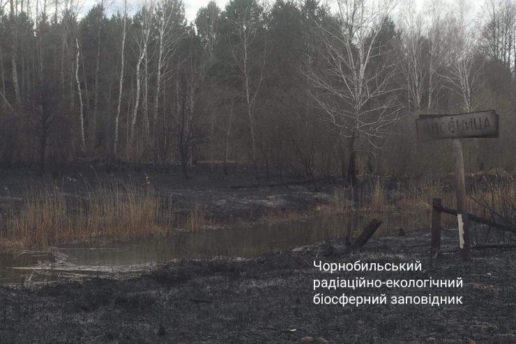 Fot. Чорнобильський Радіаційно-екологічний Біосферний Заповідник