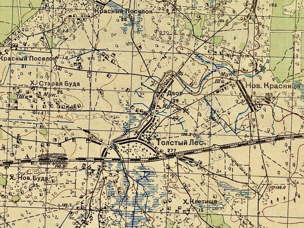 Wycinek z mapy sztabowej ZSRR z 1931 roku w skali 1:50 000 (arkusz M-35-24-Г Толстый Лес).
